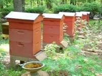 Отопление, подогрев ульев для пчел